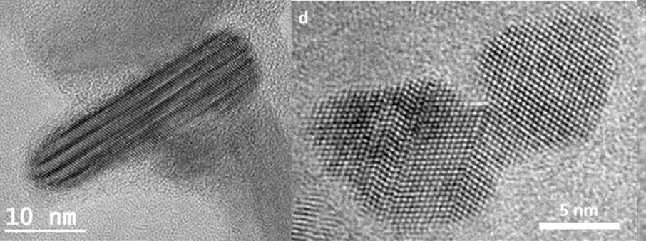 Transmission electron micrographs of biogenic nanocrystals